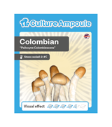 Colombian - Culture Ampoule