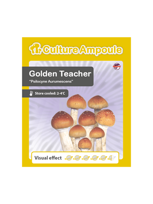 Golden Teacher - Kulturampulle