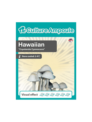 Hawaiian - Culture Ampoule