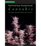 Cultivating Exceptional Cannabis: Experten-Tipps