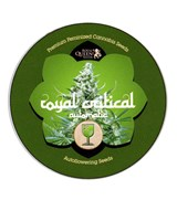 iGrowCan - Royal Critical Automatic