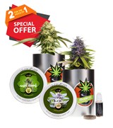 iGrowcan Cannabis Growkits - Special Offer